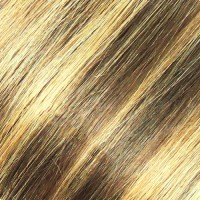 Eve Indian Remy Weft #F4/27